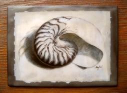 "Sydni Kruger, (AZ), ""Nautilus Legacy #2"", 5 x 7 in., Encaustic medium over graphite on paper, oil paint detail, wood panel"